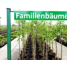Baumschule Hemmelmeyer Im Mai 3