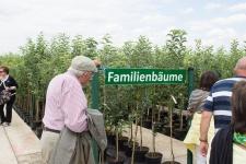Baumschule-Hemmelmeyer-41