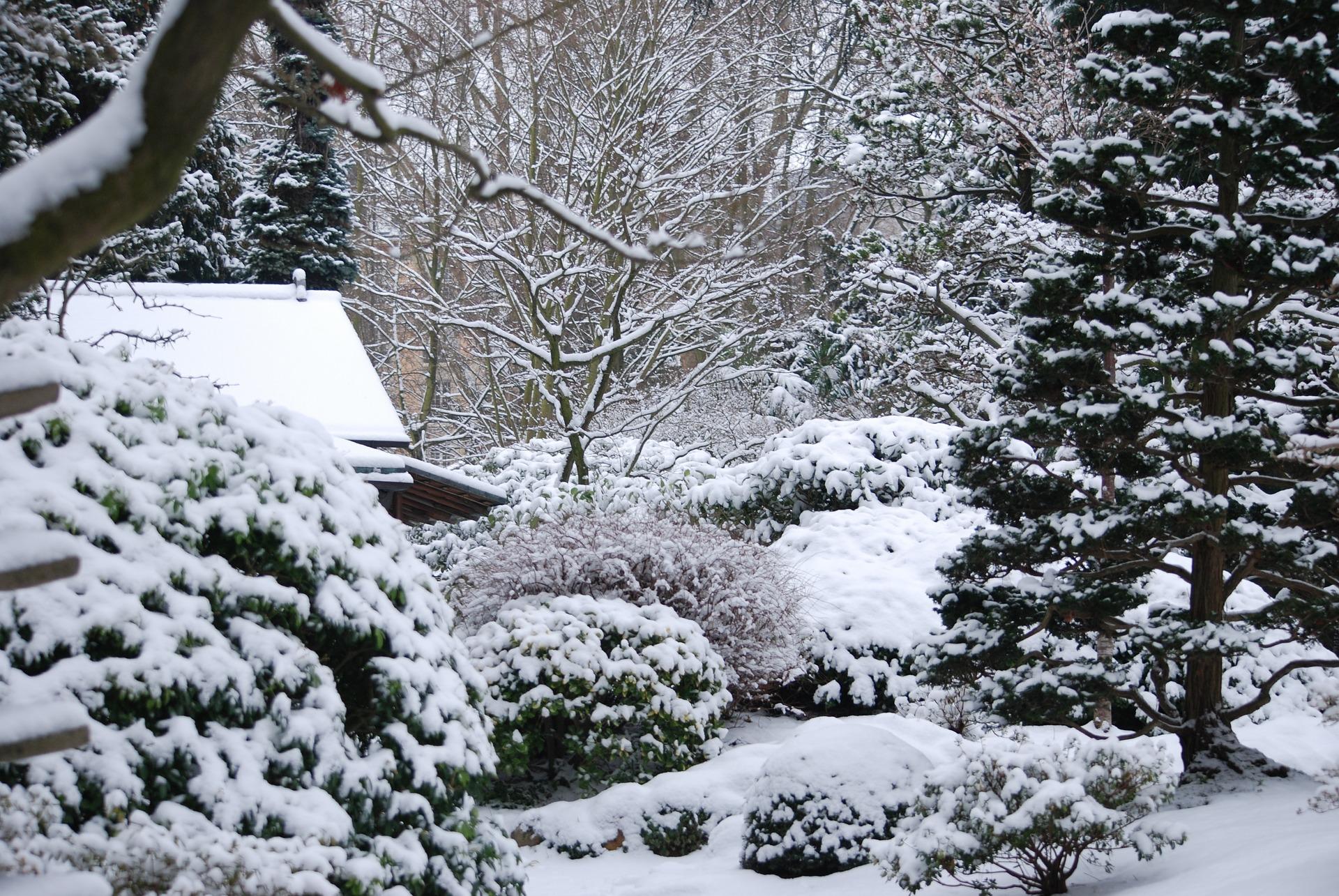 Ein tiefverschneiter Garten im Dezember